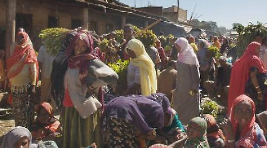 Khatmarkt in Äthopien <br/>Foto von A. Davey