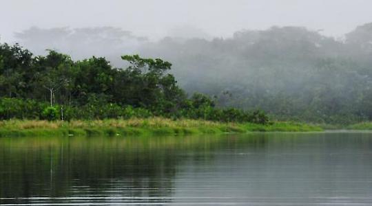 Yasuní-Nationalpark