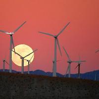 San Gorgonio Windkraftpark in Kalifornien <br/>Foto von Caveman 92223